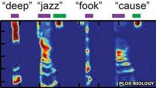 Plots of predicted spectrograms (PLoS Biology)