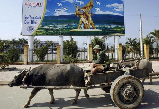Man in a cart behind a buffalo in Dien Bien, Vietnam