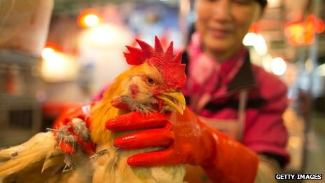 "A vendor weighs a live chicken at the Kowloon City Market on 12 April 2013 in Hong Kong. Local authorities have stepped up the testing of live poultry imports from China to include a rapid test for the H7N9 ""bird flu"" virus"