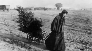 A woman dragging a fir tree over a field