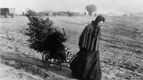 A woman dragging a fir tree over a field