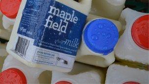 Maple Field Milk