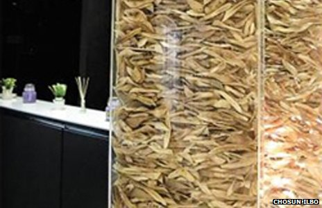 Slivers of bone inside a display cabinet