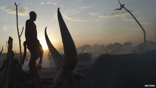 South Sudanese cattle herders stand among their animals in April 2013