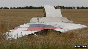 A part of the wreckage of a Malaysia Airlines Boeing 777 plane is seen after it crashed near the settlement of Grabovo in the Donetsk region on 17 July 2014.