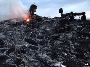 Smoke rises up at a crash site of a passenger plane, near the village of Grabovo, Ukraineon 17 July 2014.