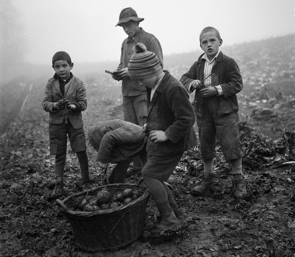 Archive photo of boys with a basket of vegetables