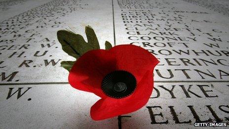 A poppy on a grave