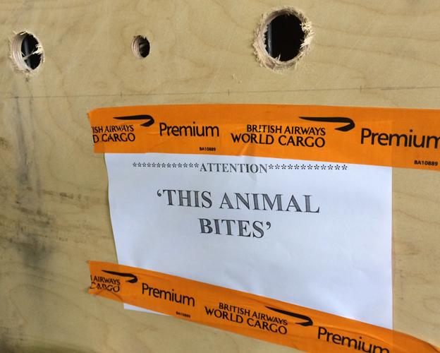 'This animal bites' cargo label