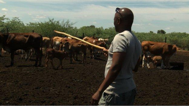 Bakang Tsheboagae