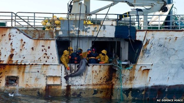 Crew members fishing illegally in the Southern Ocean haul in a Patagonian toothfish.