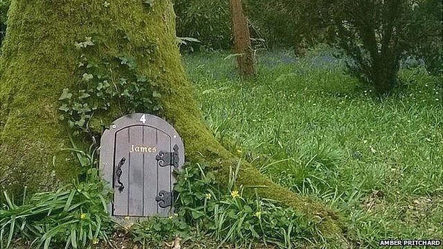 Wayford Woods, Somerset