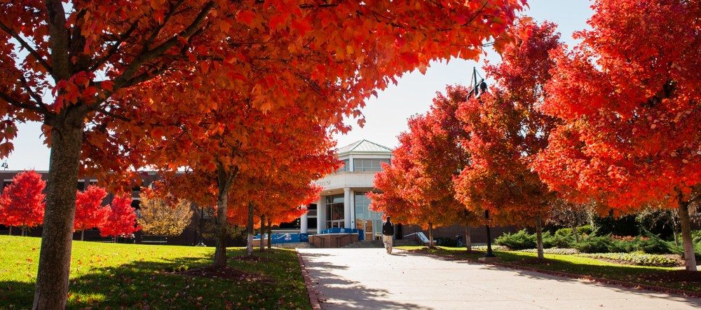 Colorful trees outside the Maddox Grand Atrium