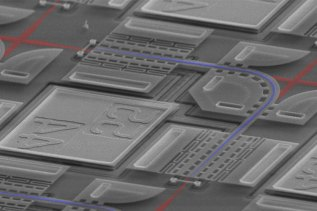 """An SEM image showing the """"light switch"""" structure"""