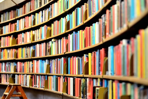 Lavoro per bibliotecari
