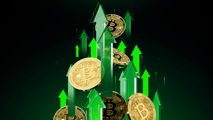 'Enormous Wall of Money' Coming Into Bitcoin, Price $1 Million in 5 Years, says Raoul Pal