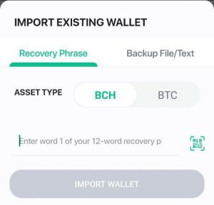 How to Recover Your Funds If You Lose Your Bitcoin Wallet
