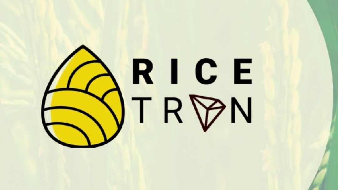 Rice-Based Stablecoin Is Being Launched in Indonesia