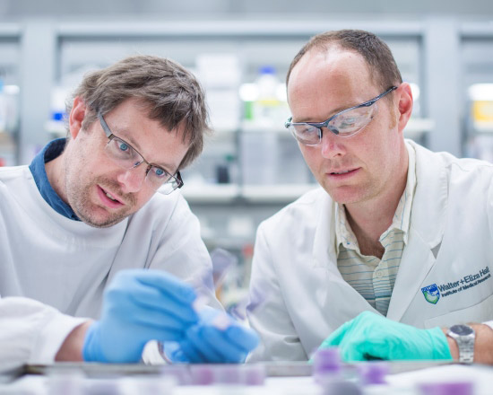 new cancer discovery by researchers at WEHI