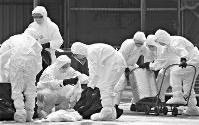 浙江现家庭聚集性H7N9病例 全家发病 – 澳洲
