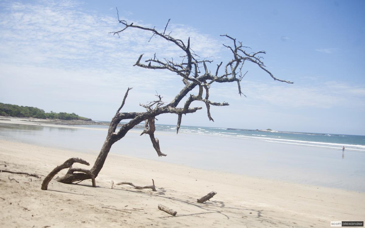 Playa Tamarindo by Scott Alexander