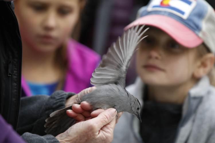 Bird Banding trip