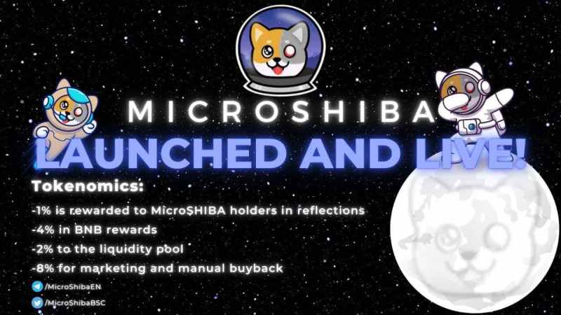 MicroSHIBA: Introducing a New Form of Buyback Transactions In a DeFi-based Community Project