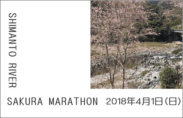 第10回 四万十川桜マラソン大会