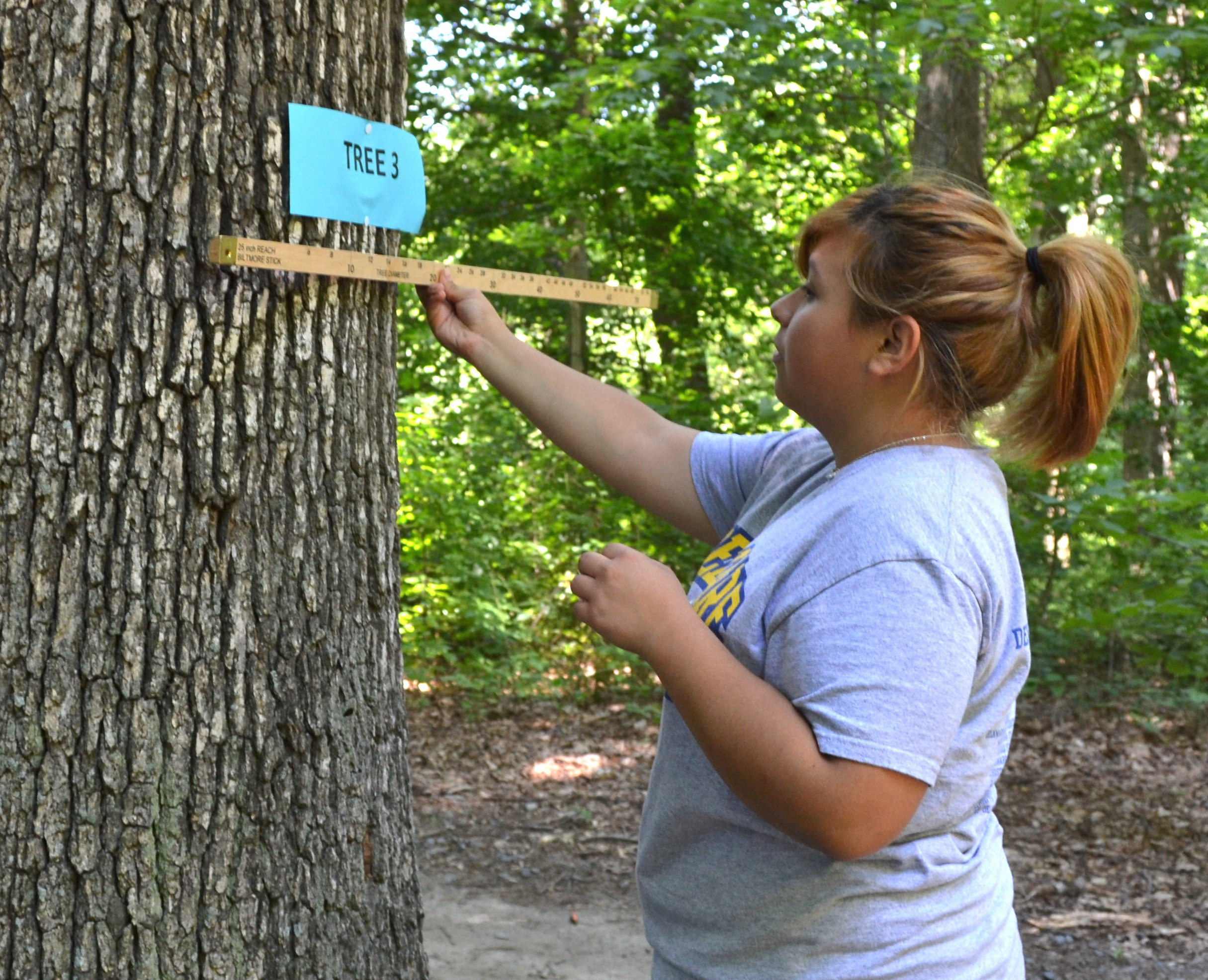 Middletown H S Ffa Students Take Forestry Challenge