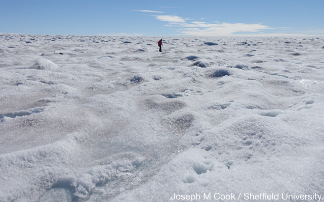 The effect of rain on Greenland's ice