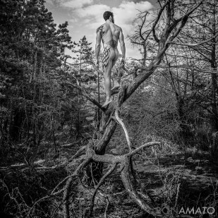 nude man standing on dead tree branches