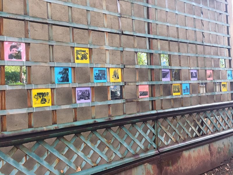 photos printed on different colors of paper, displayed on a wall in East Harlem