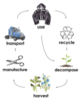 The closed loop lifecycle of Flora Fur.