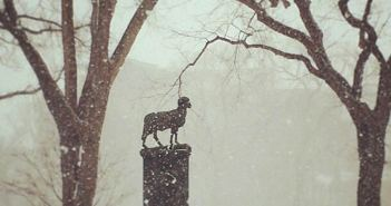 Ram statue in a snowstorm at the Rose Hill campus of Fordham University.