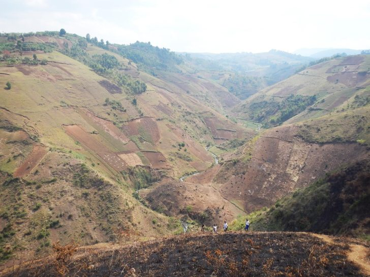 Tropical soil disturbance could be hidden source of CO2
