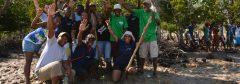 Community key for successful mangrove restoration, says Lalao Aigrette of Blueventures Madagascar