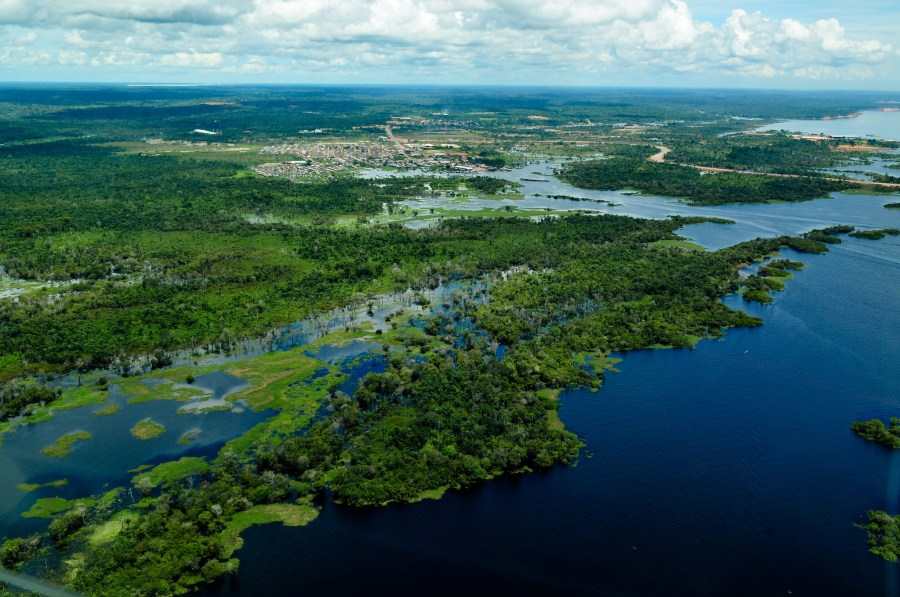 An aerial view of the Brazilian Amazon in the state of Amazonas, taken in 2011. Amazonas is among the states most affected by the fires this year. Neil Palmer, CIAT