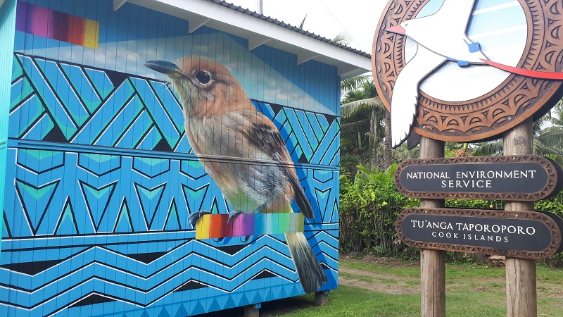 Mural of kākerōri (Rarotonga flycatcher)