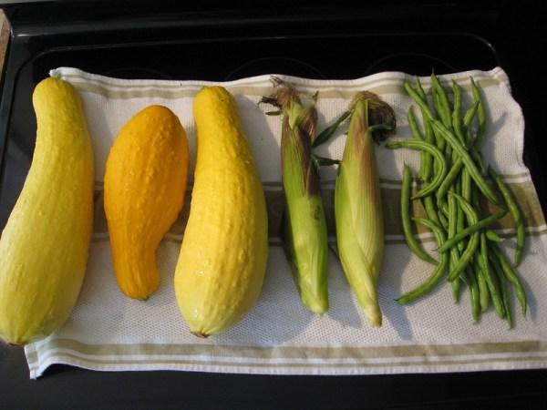 Three sisters: squash, corn and beans