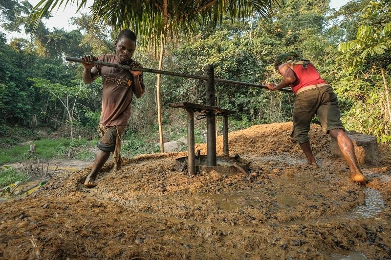 Palm oil production, DR Congo