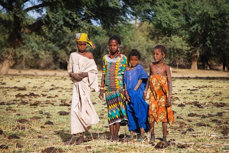 Drylands, Cameroon