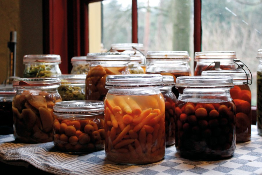 Fruits and vegetables sit fermenting in jars. Tinekex3, Flickr