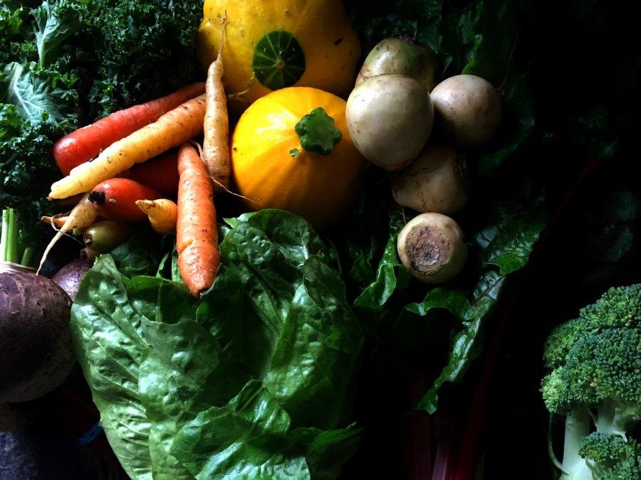 Organic bounty. Lenny DiFranza, Flickr