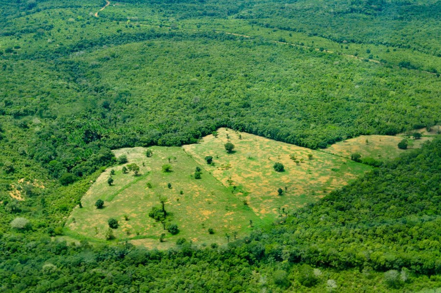 An aerial view of the Amazon rainforest in the Brazilian state of Amazonas, taken in 2011. Neil Palmer, CIAT