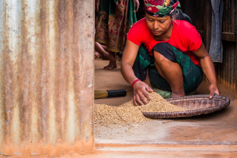 Sunita, a Nepalese wife of a migrant worker, prepares rice for cooking. Mokhamad Edliadi, CIFOR