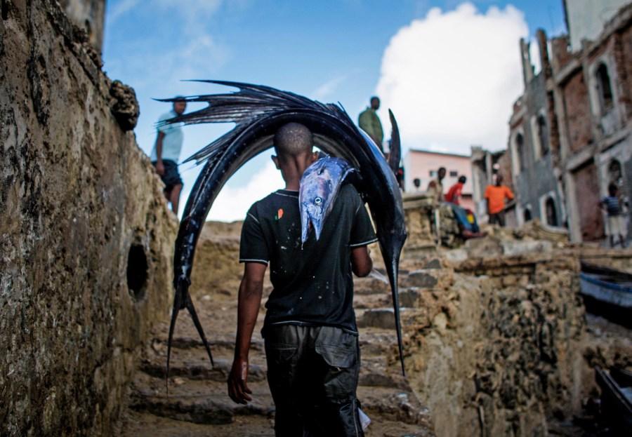 Un pescador local somalí lleva la pesca del día a un mercado local en Mogadiscio. La pesca ilegal extranjera descontrolada está acabando con las poblaciones de peces y hábitats en las aguas costeras del país y creando conflictos con muchos pobladores locales que dependen de esta actividad sostenible para su subsistencia. AMISOM Public Information