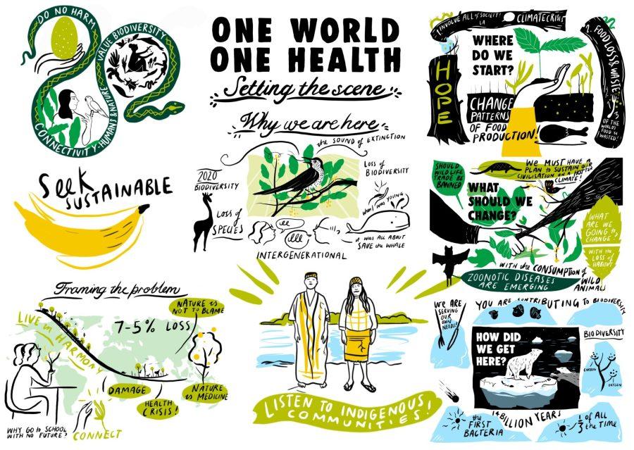 Las comunidades locales son vitales en la prevención de enfermedades por medio del enfoque Una Sola Salud. Ilustración por Josie Ford