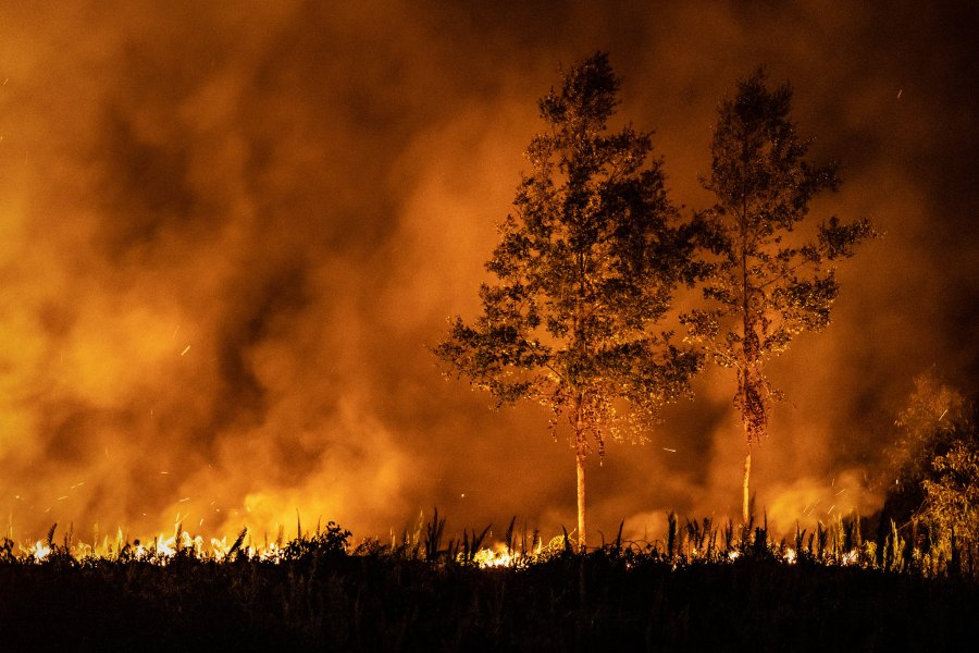 Forest and plantation fires in Jekan Raya sub-district, Palangkaraya, Central Kalimantan, Indonesia in August 2019. Prachatai/Flickr