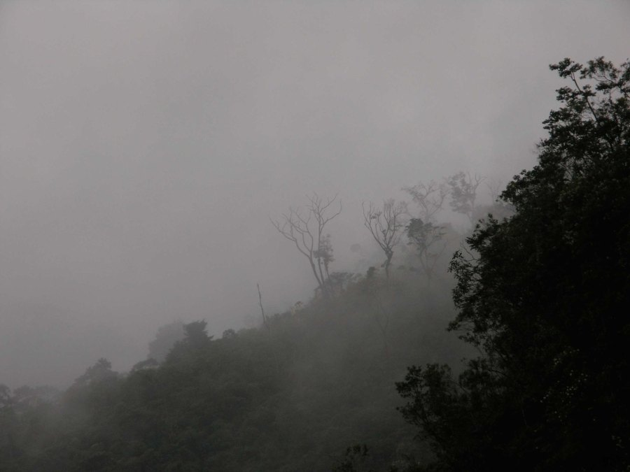 Bosque nublado en el Parque Nacional Lagunas de Montebello en Chiapas, México. Lon y Queta, Flickr