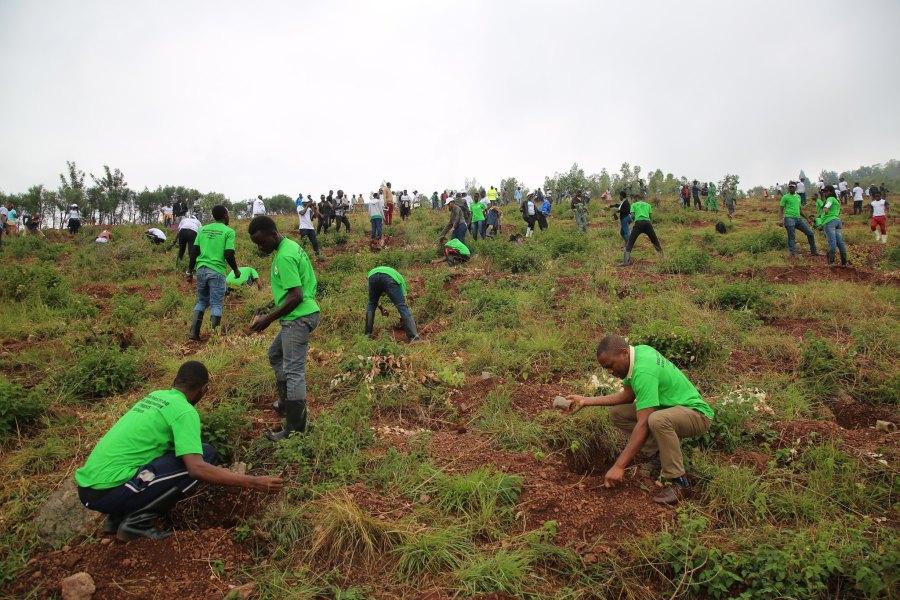 Tree planting during the launch of Rwanda's 2018/19 Tree Planting Season. Rwanda's Ministry of Environment.